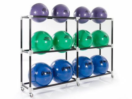 Set of 12 stability balls and charts