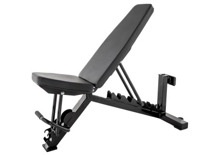 IronRange Freestanding Adjustable Bench