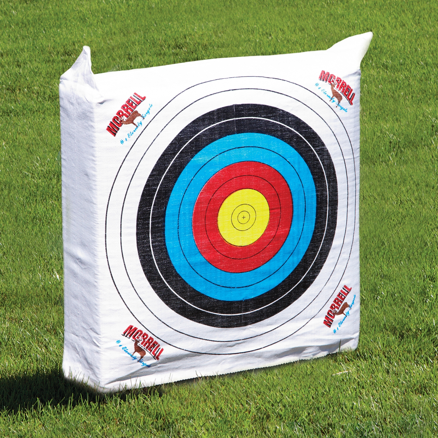 Official NASP archery target for schools