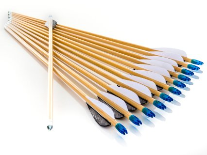 Competition Cedar Arrows with Feather Fletching