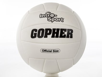 Gopher Intro-Sport Synthetic Volleyballs