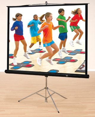 HamiltonBuhl Projector Screens