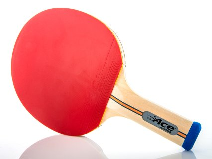 Gopher Ace™ 2 Star Table Tennis Paddle