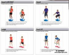 Squat and lunge exercises for balance discs