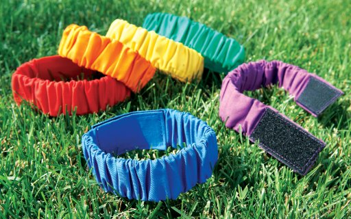 Rainbow colored ankle bands for field day