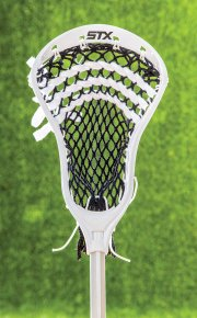 12-player set of stallion lacrosse sticks