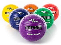 Rainbow colored set of sport volleyballs