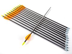 Fiberglass Arrows with Plastic Vanes